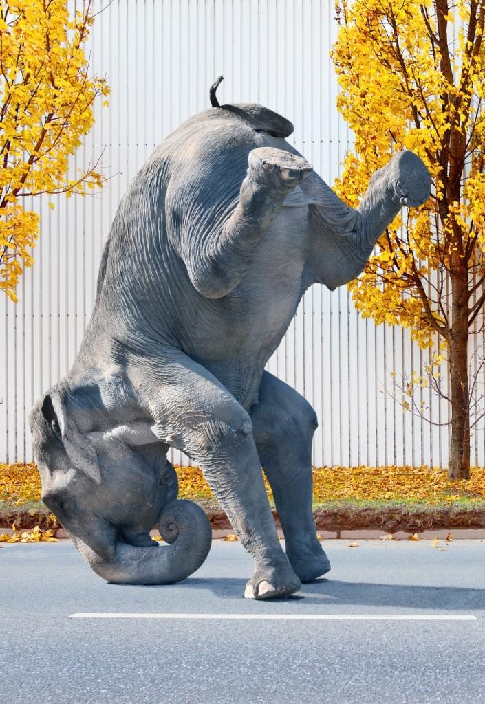 Ein großer Elefant versucht, sich auf den Kopf zu stellen